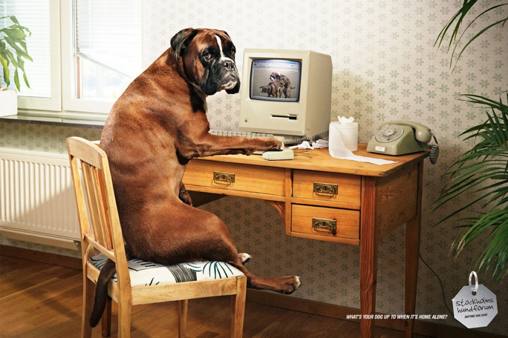 Stockholms hundforum 1200x800 1024x682 51 Examples of Funny & Creative Advertising