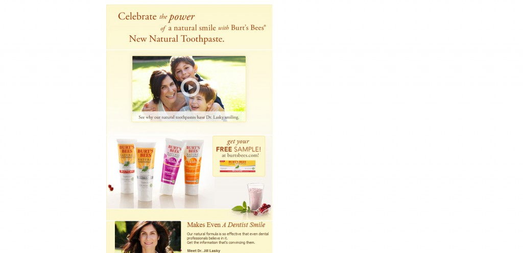 burtsbees 1024x496 40 Great Examples of Facebook Fan Page Designs