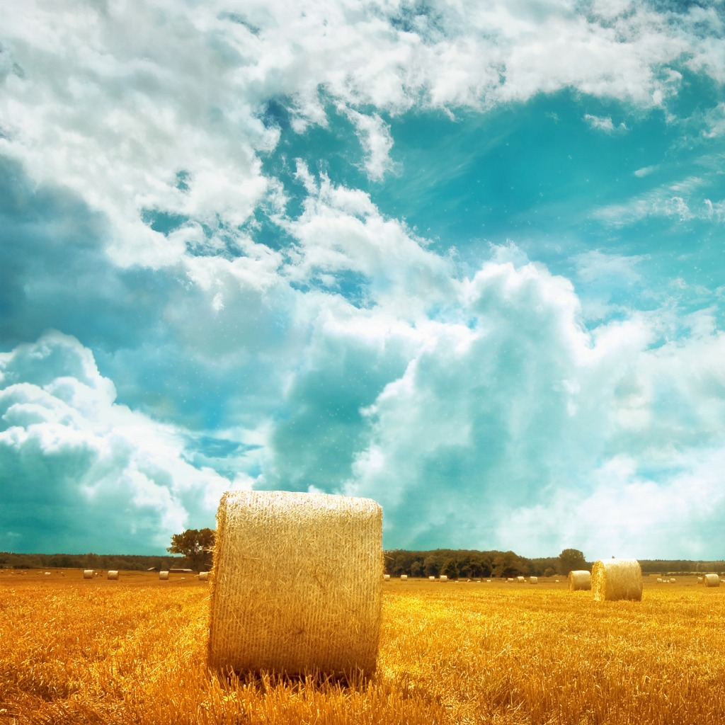 farmers field 40 Ravishing Scenery iPad Wallpapers