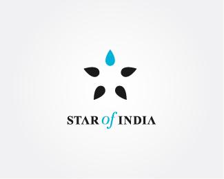 8c2ddc7c7585f6e4795702384ba360d51 35 Inspiring Star Logo Designs