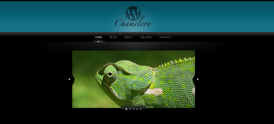 WordPress Chameleon 25 Brilliant Business and Portfolio WordPress Themes