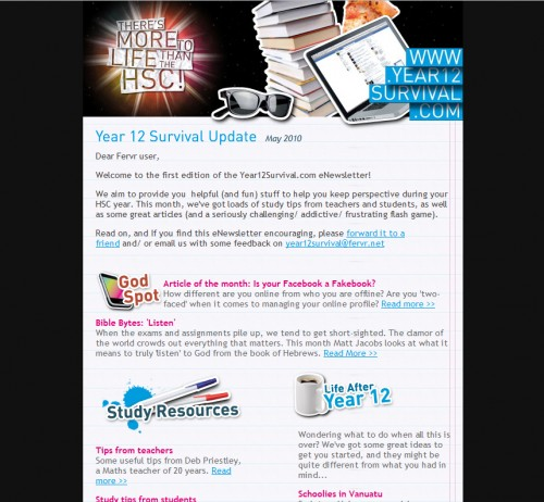 Year 12 Survival 500x462 45 Eye Opening Examples of Email Newsletter Designs