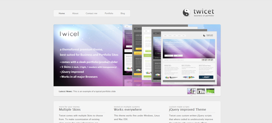twicet 25 Brilliant Business and Portfolio WordPress Themes