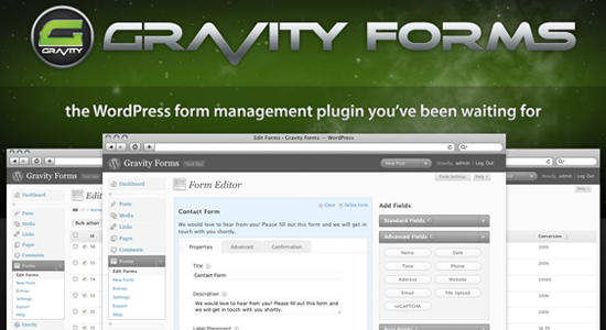 gravityforms Top 10 WordPress Contact Form Plugins