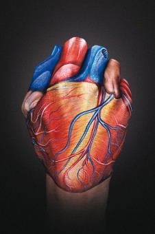 Heart Hand 226x3401 30 Incredible Hand Paintings by Guido Daniele