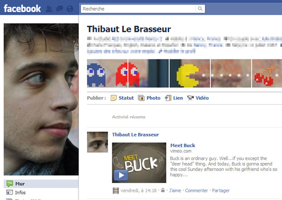 Thibaut Le Brasseur 25+ Examples of New Creative Facebook Profile Pages