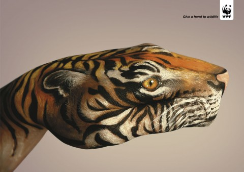 Tiger 480x3401 30 Incredible Hand Paintings by Guido Daniele