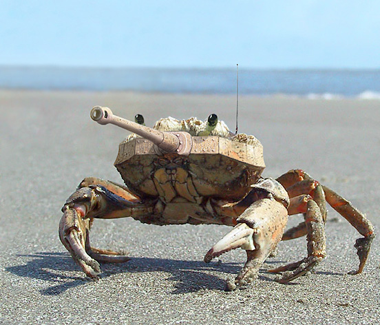 TankCrab l1 40 Visionary Examples of Creative Photography #4