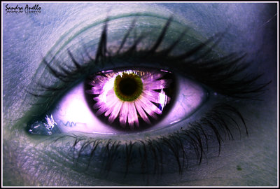 The eye of an elf 2 by xXSidewinderXx1 20 Beautiful Macro Photos of the Human Eye
