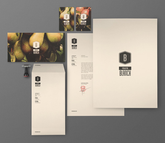 fruita21 35 Perfect Examples Of Branding Design