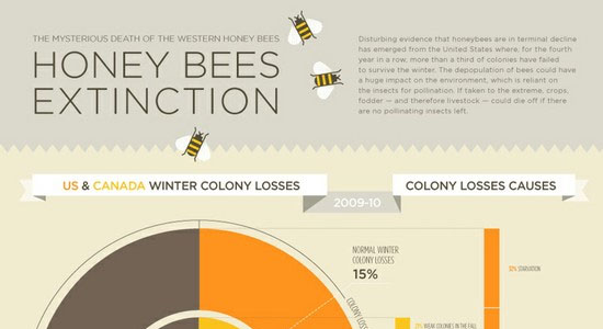 Honey Bee Extinction 55 Striking Data Visualization and Infographic Poster Designs