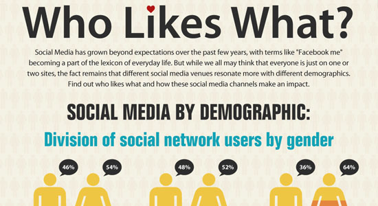 Who Likes What Social Media By Demographic 55 Striking Data Visualization and Infographic Poster Designs