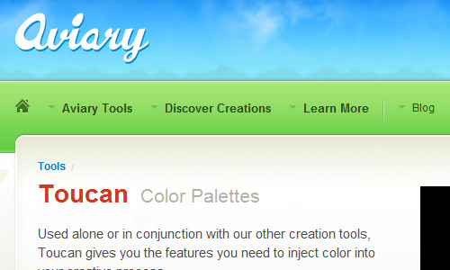 Toucan How to Select The Perfect Color for Your Website