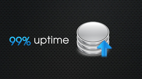 uptime Top Traits to Look for in a Fantastic Web Host