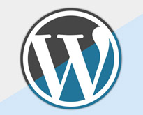 wordpress-social-plugins
