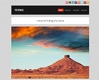 Top-Free-WordPress-Themes-of-2012