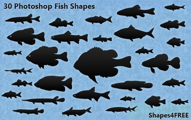 30-fish-shapes-lg1