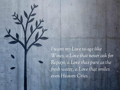 quotes-about-love-34