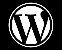 Common-WordPress-Mistakes
