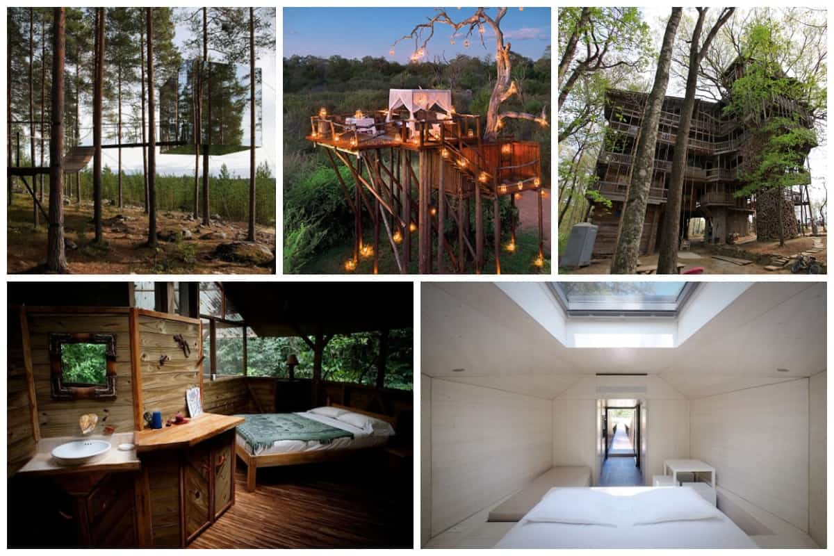 12 Creative And Innovative Tree House Designs Inspirationfeed