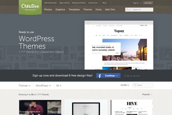 Popular WordPress Themes
