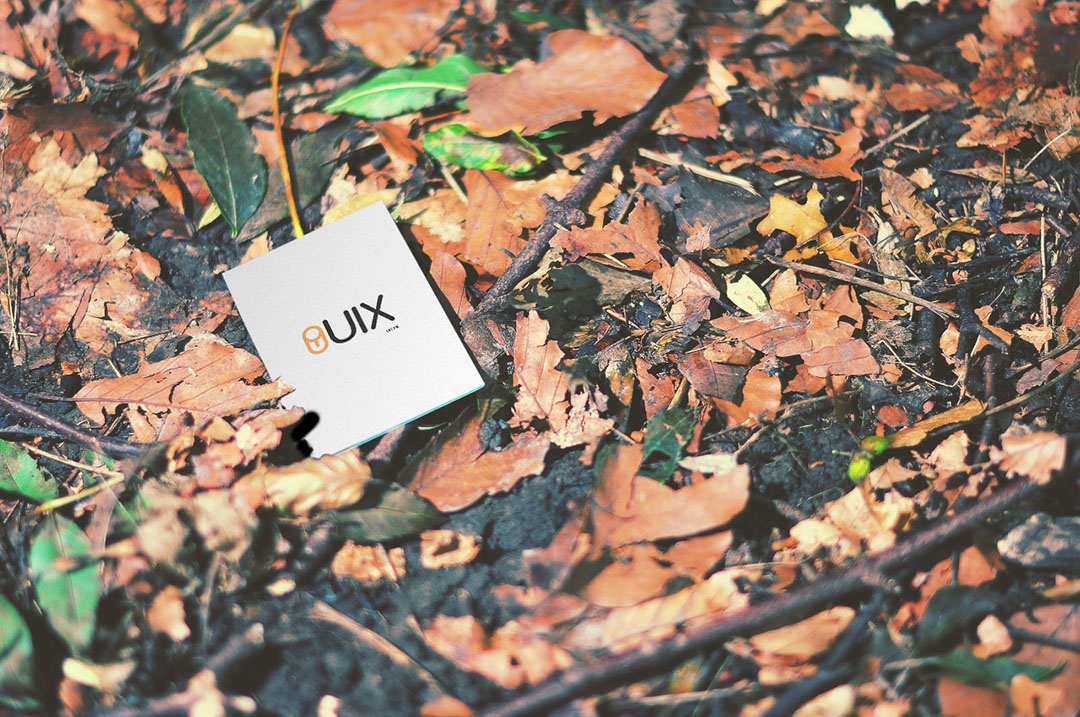 Business Card Mockup in the Woods