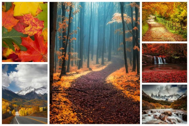 Fall Desktop Wallpaper Inspirationfeed