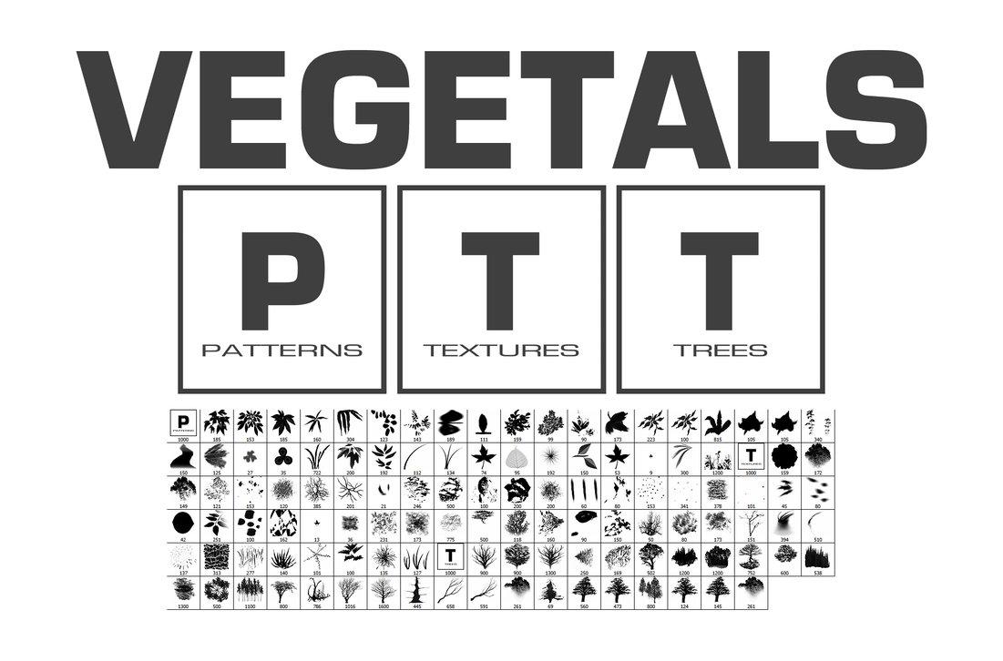 115 Vegetals Brushes