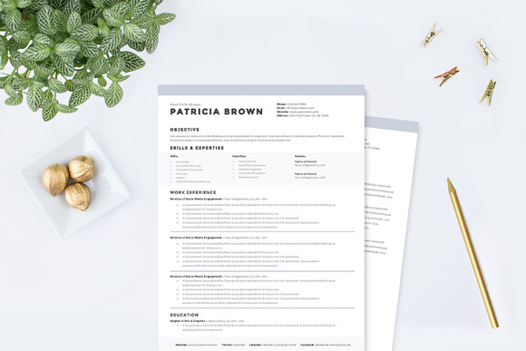 clean-resume-template