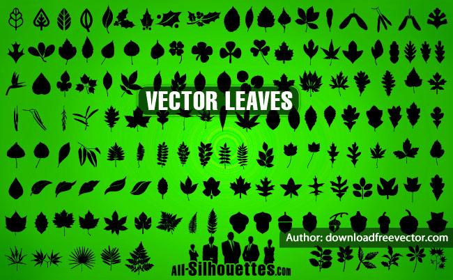 141 Vector Leaves