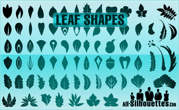 Leaf Shape Silhouettes