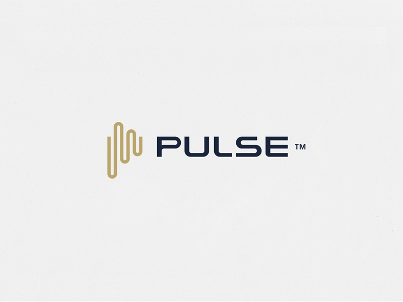 Pulse Logo by Radek Blaska
