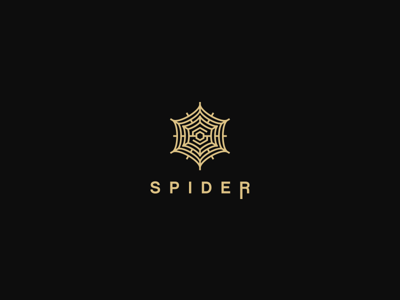 Spider by Dusan Sevarika