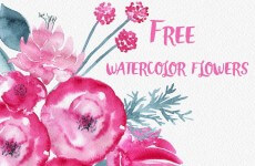 Watercolor Flower Set-min