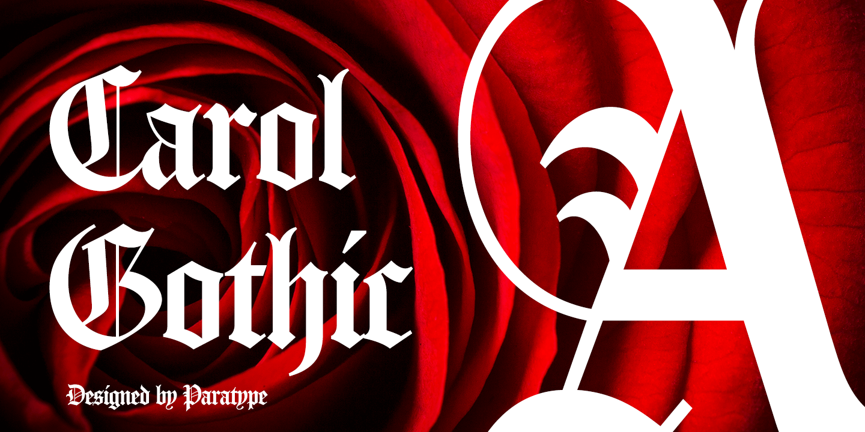Carol Gothic by ParaType
