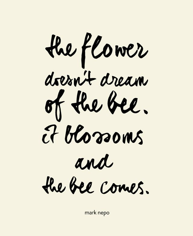 the flower doesnt dream of the bee it blossoms and the bee comes