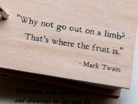 why not go out on a limb thats where the fruit is