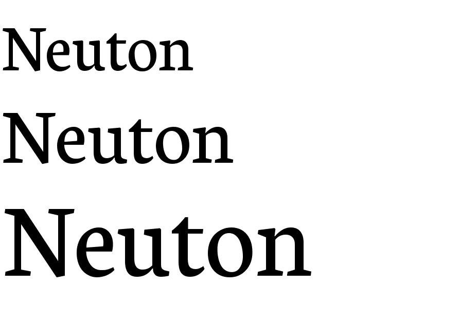 1neuton