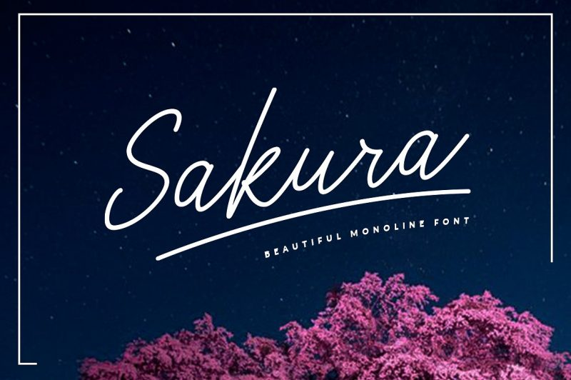 Sakura Font Set - Script Like Save Sakura Font Set - Script - 1 Sakura Font Set - Script - 2 Sakura Font Set - Script - 3 Sakura Font Set - Script - 4 Sakura Font Set - Script - 5 Sakura Font Set - Script - 6 Sakura is A clean & classy signature-style font set, perfect for creating authentic hand-lettered text quickly & easily. With exaggerated strokes and an extra bouncy baseline, Sakura has an unmistakable charm; perfect for logos, headers, company or personal branding, product packaging, cards & handwritten quotes.