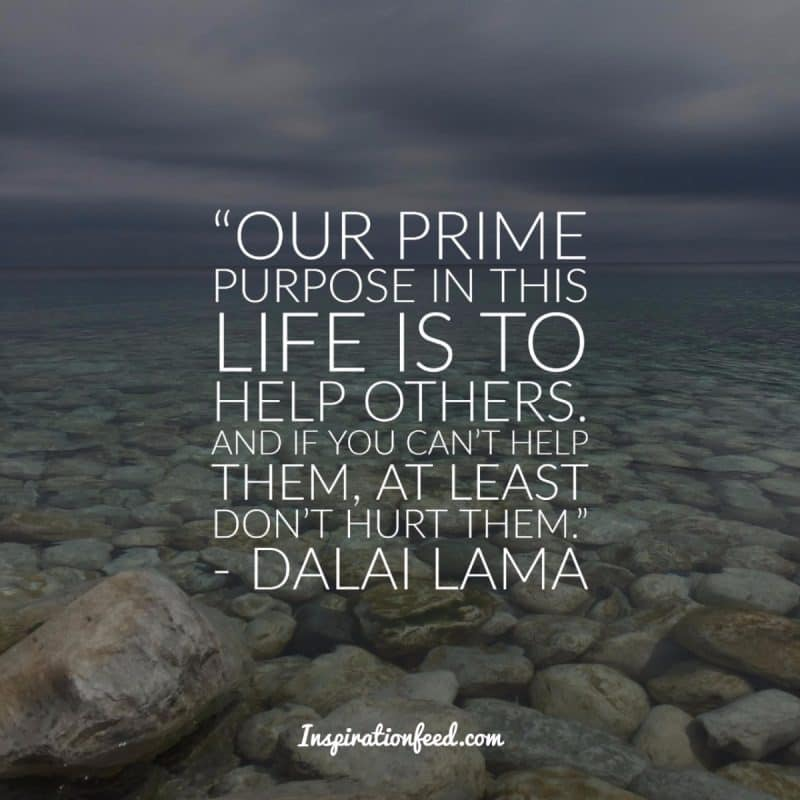 30 Dalai Lama Quotes On Compassion Peace And Life