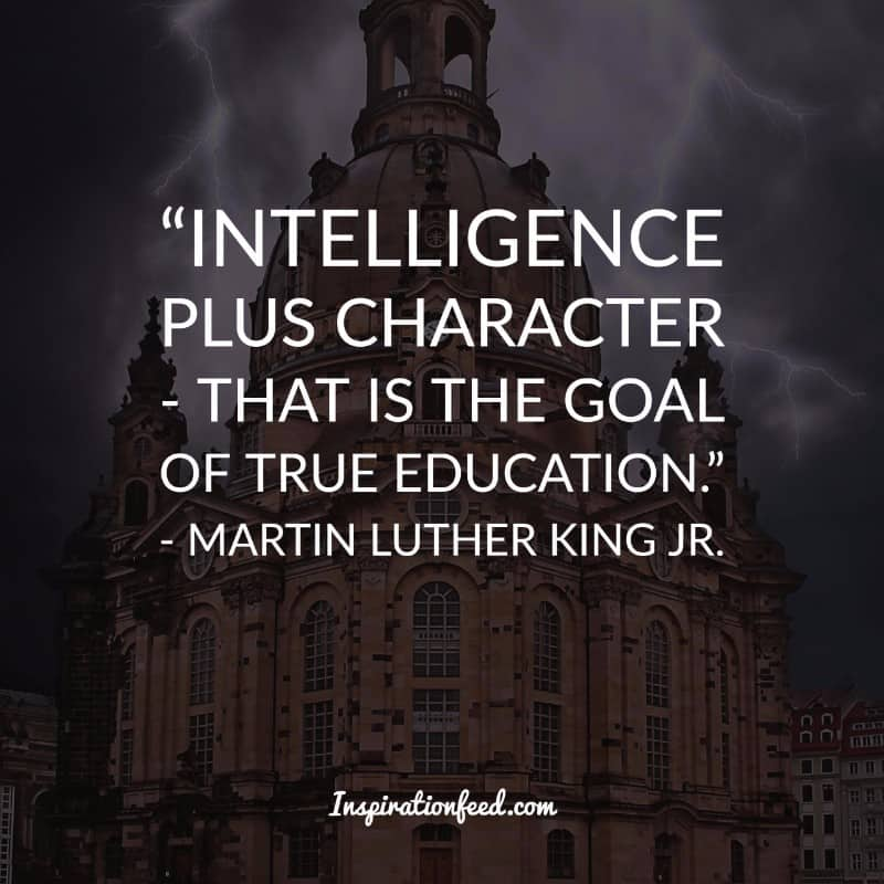 30 Martin Luther King Jr Quotes On Courage And Equality