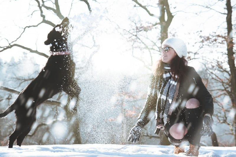 Woman palying in the snow with her dog
