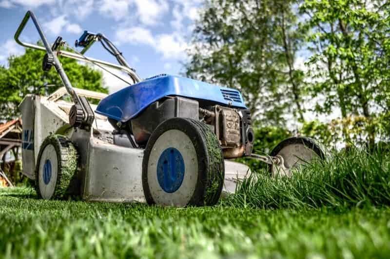 Blue lawn mower cutting grass close up