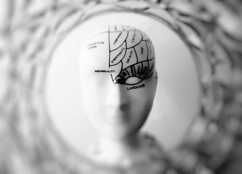 Black and white photo of a brain model