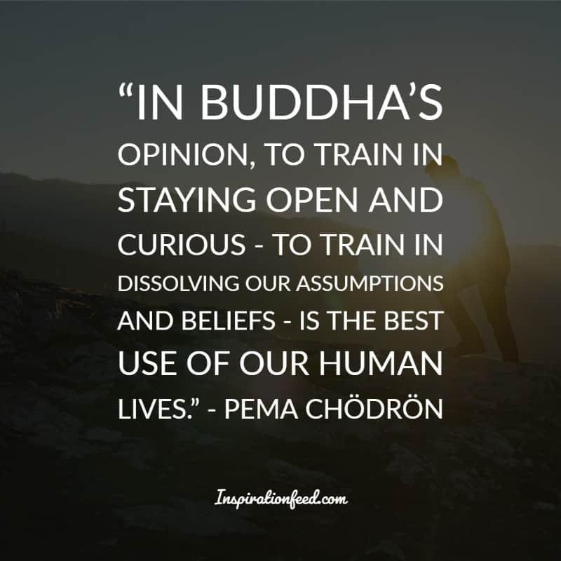 Pema Chodron Quotes