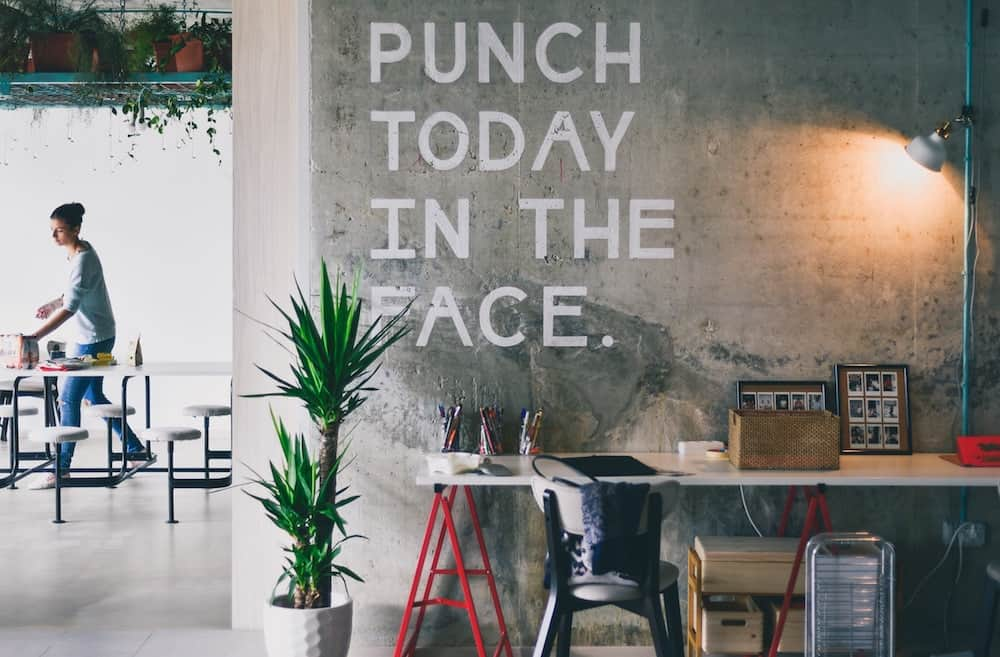 Punch today in the face written on a wall