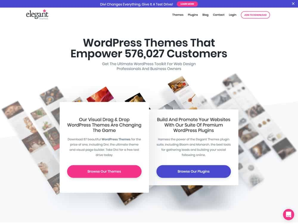 WordPress Themes Loved By Over 550k Customers