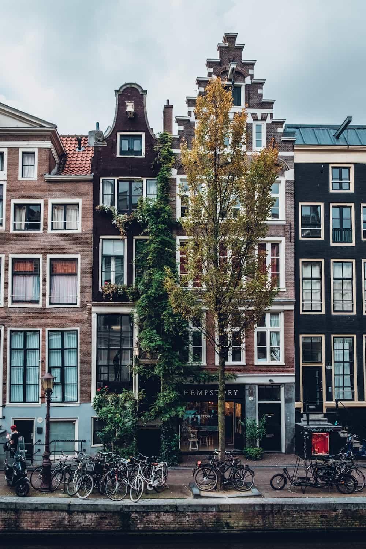 Haarlem amsterdam