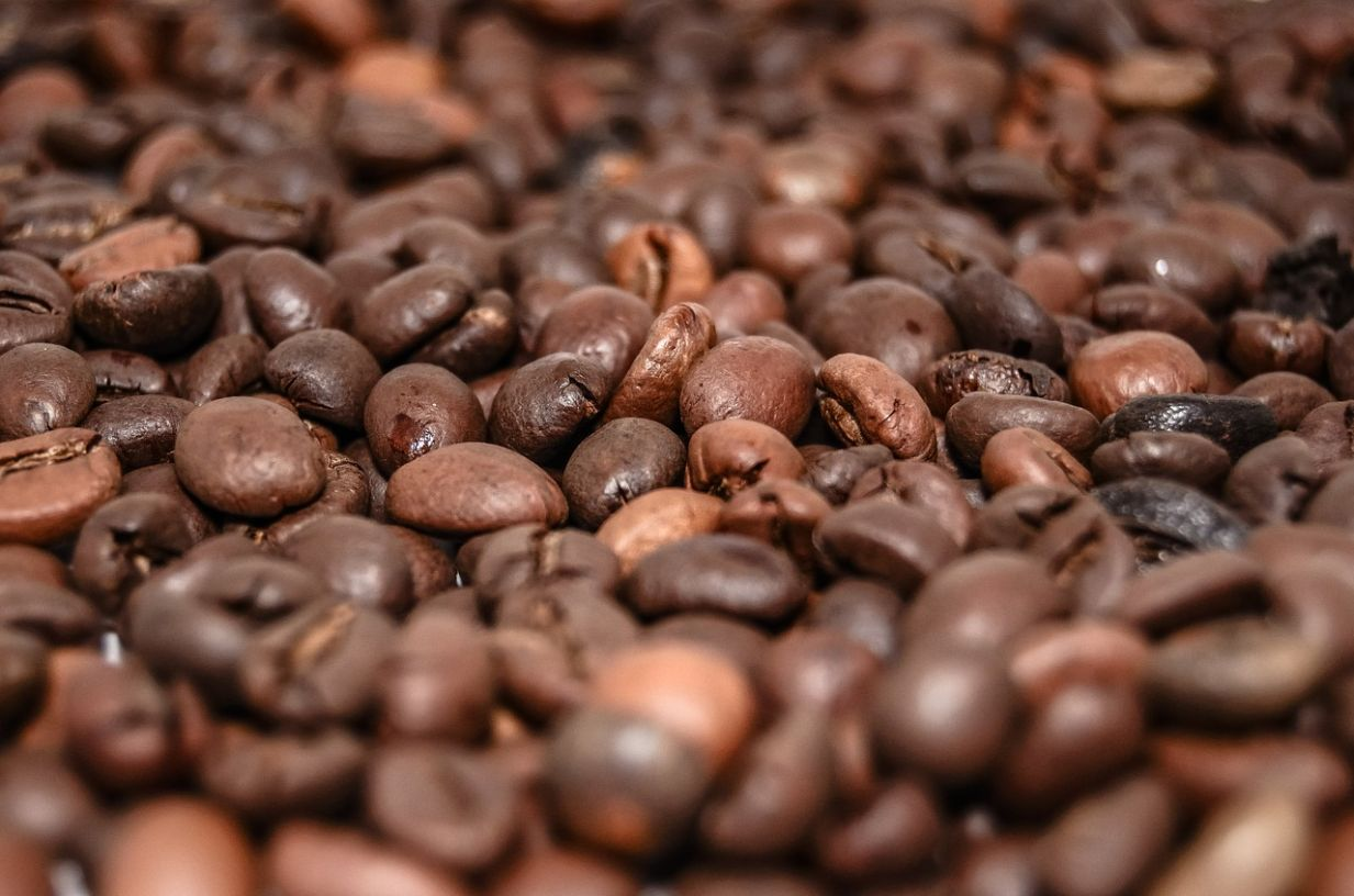 Only go for fresh coffee beans