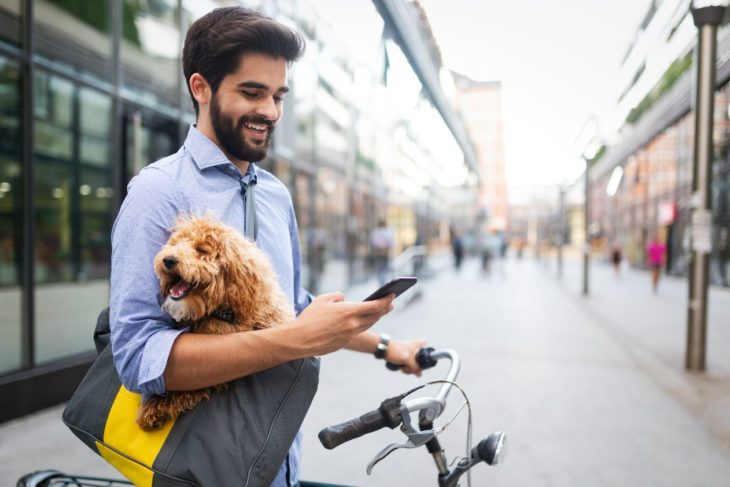 Four Must-have Features for Dog Walking Service App